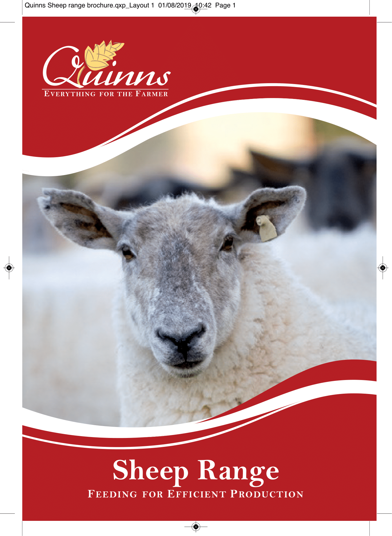 Quinns Sheep range brochure AW-1