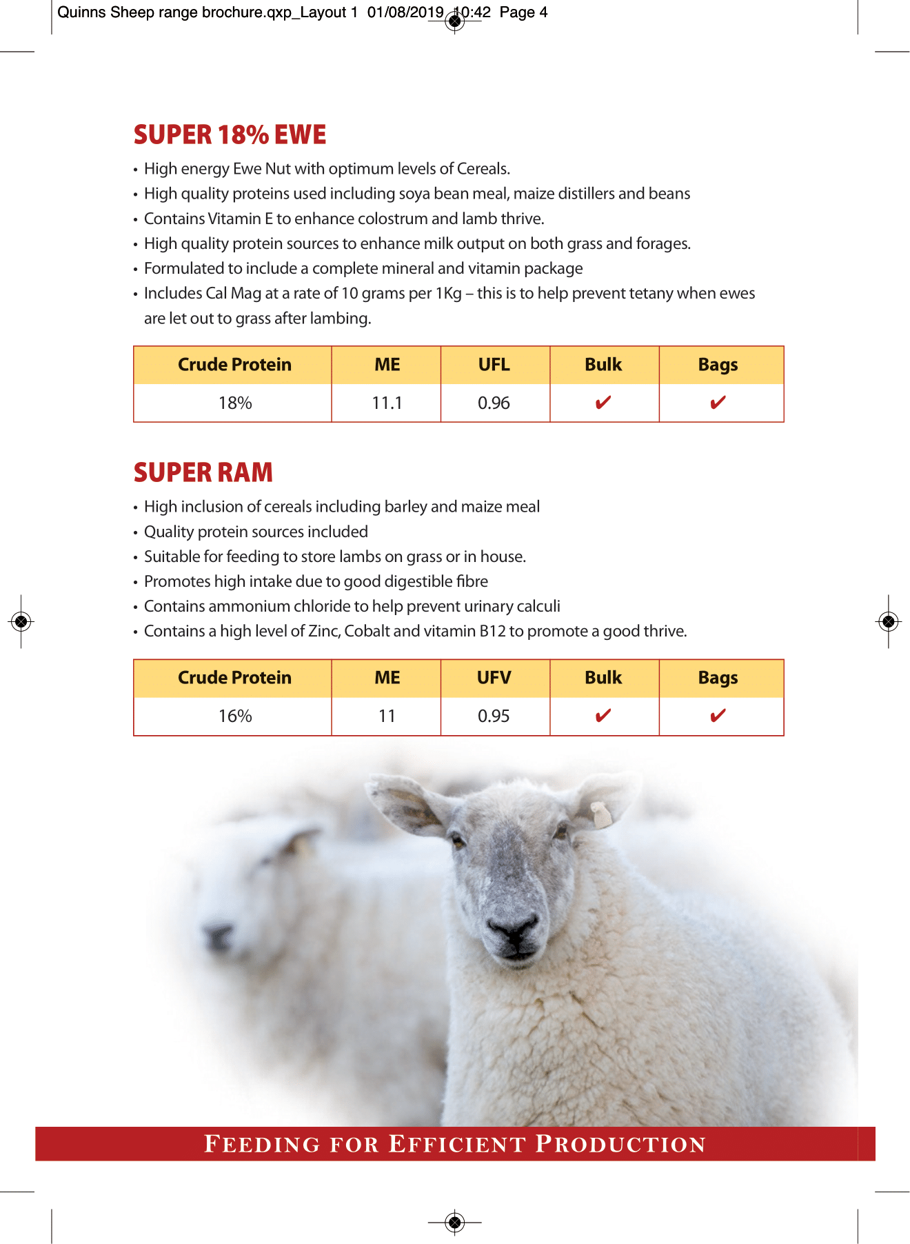 Quinns Sheep range brochure AW-4