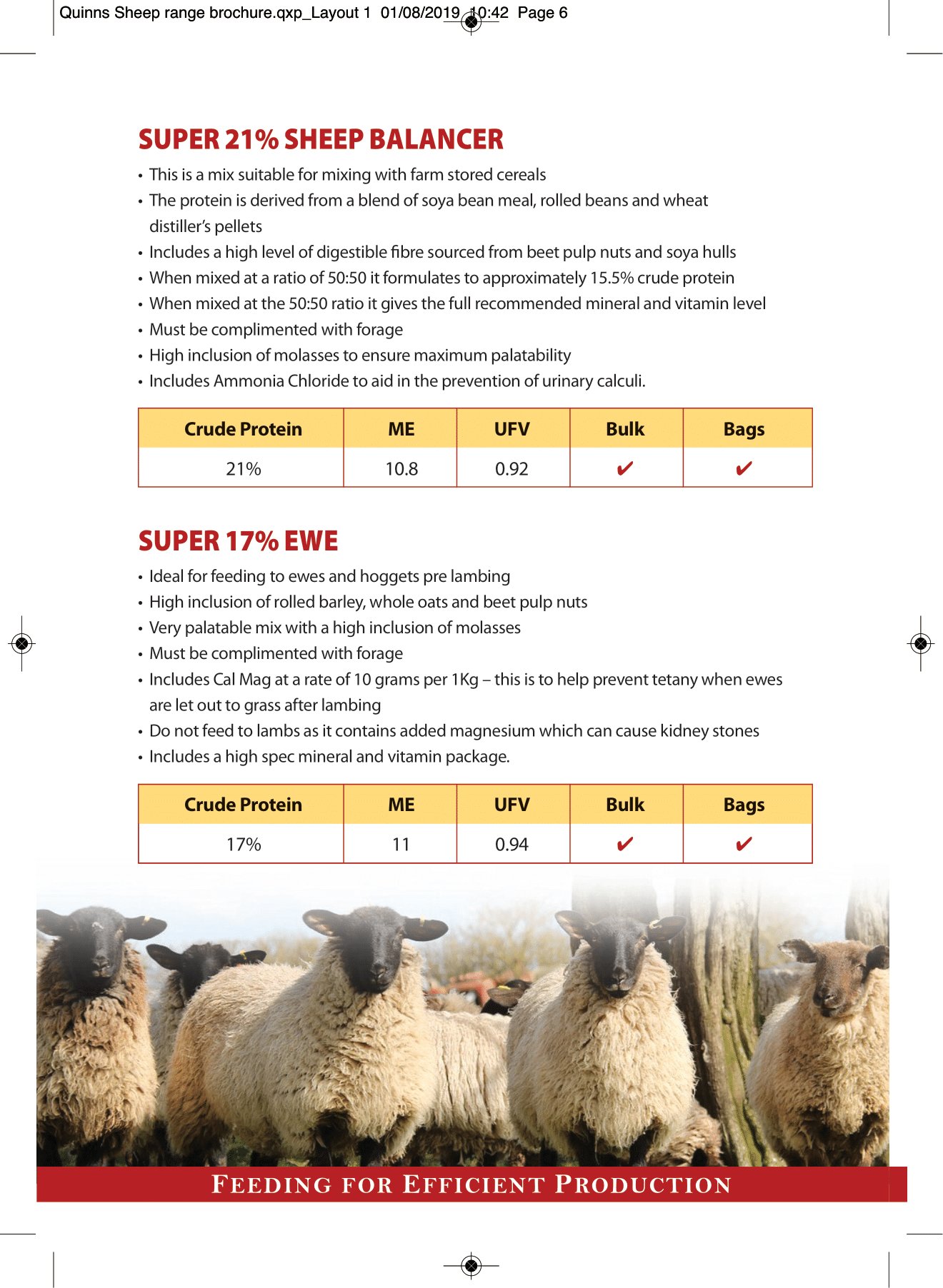 Quinns Sheep range brochure AW-6