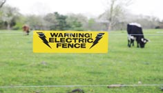 wire and fencing