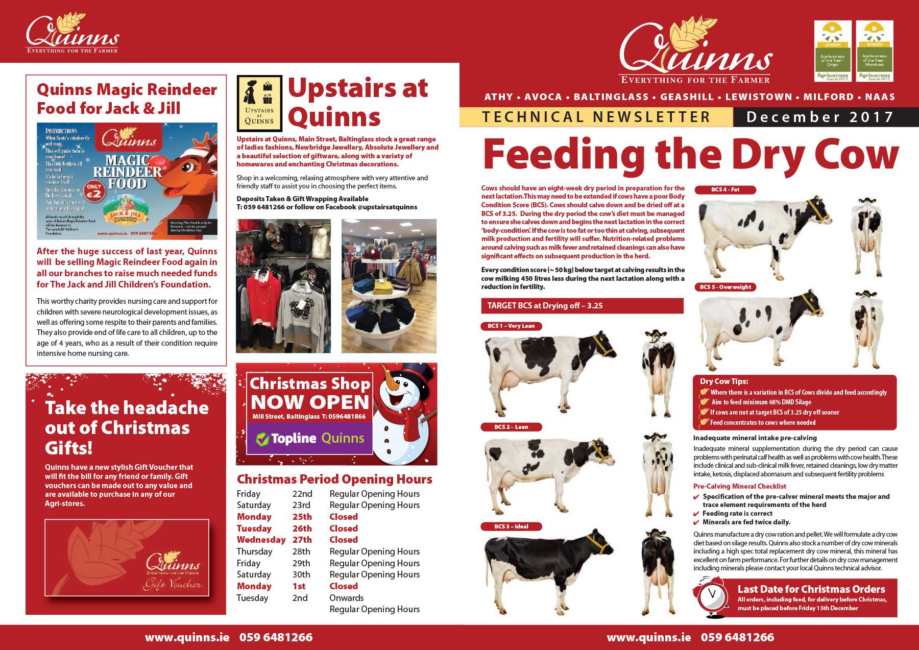 Quinns newsletter December