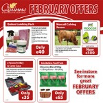 Quinns February Offers
