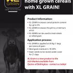 XL Grain A2 poster copy-1