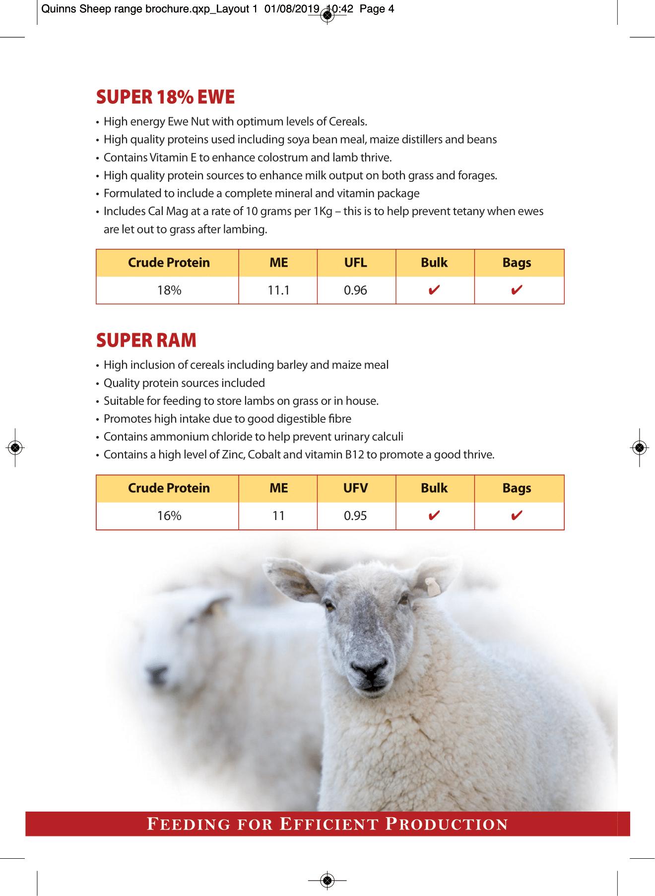 Quinns Sheep range brochure AW-4