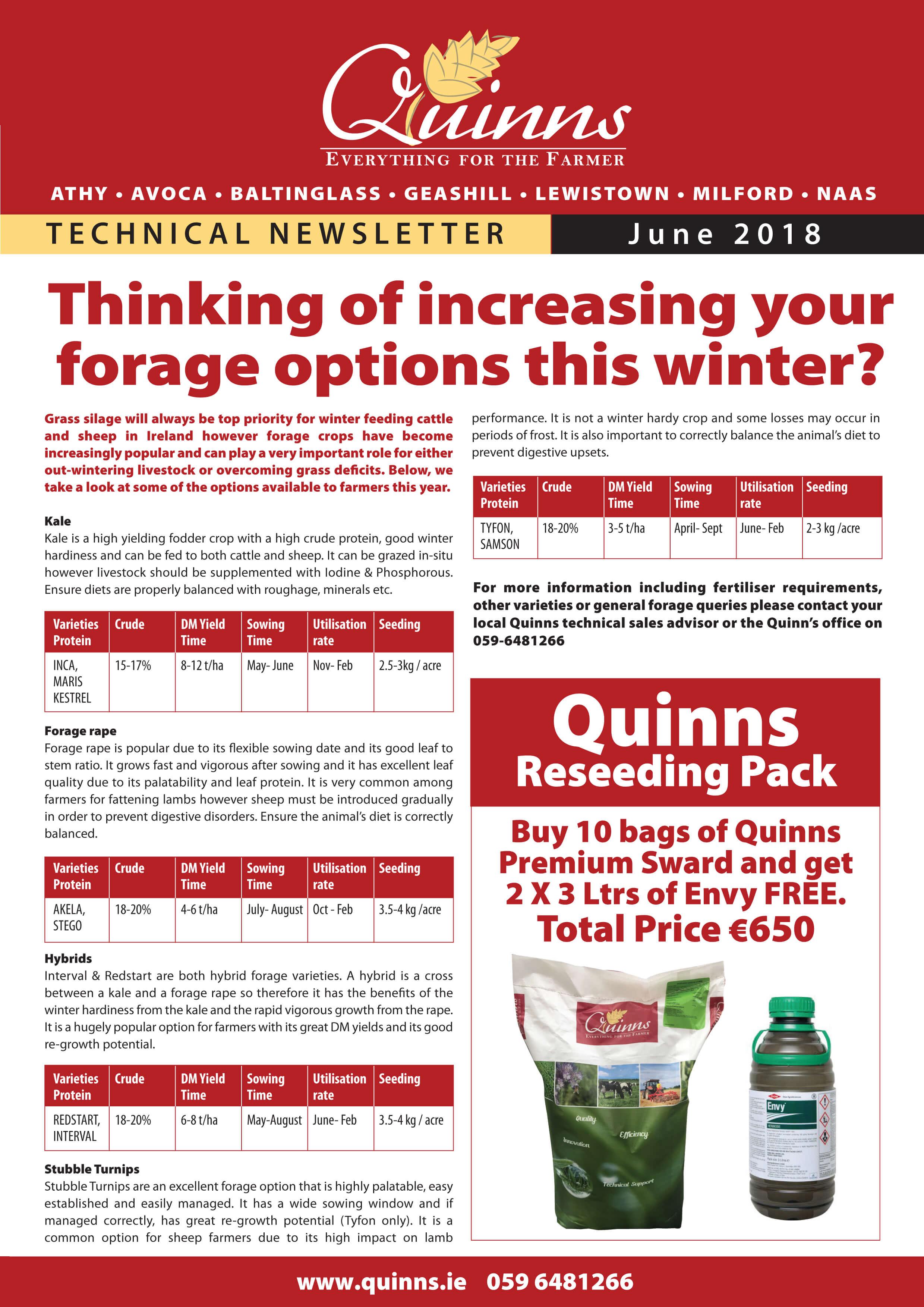 Quinns newsletter June_18 p1