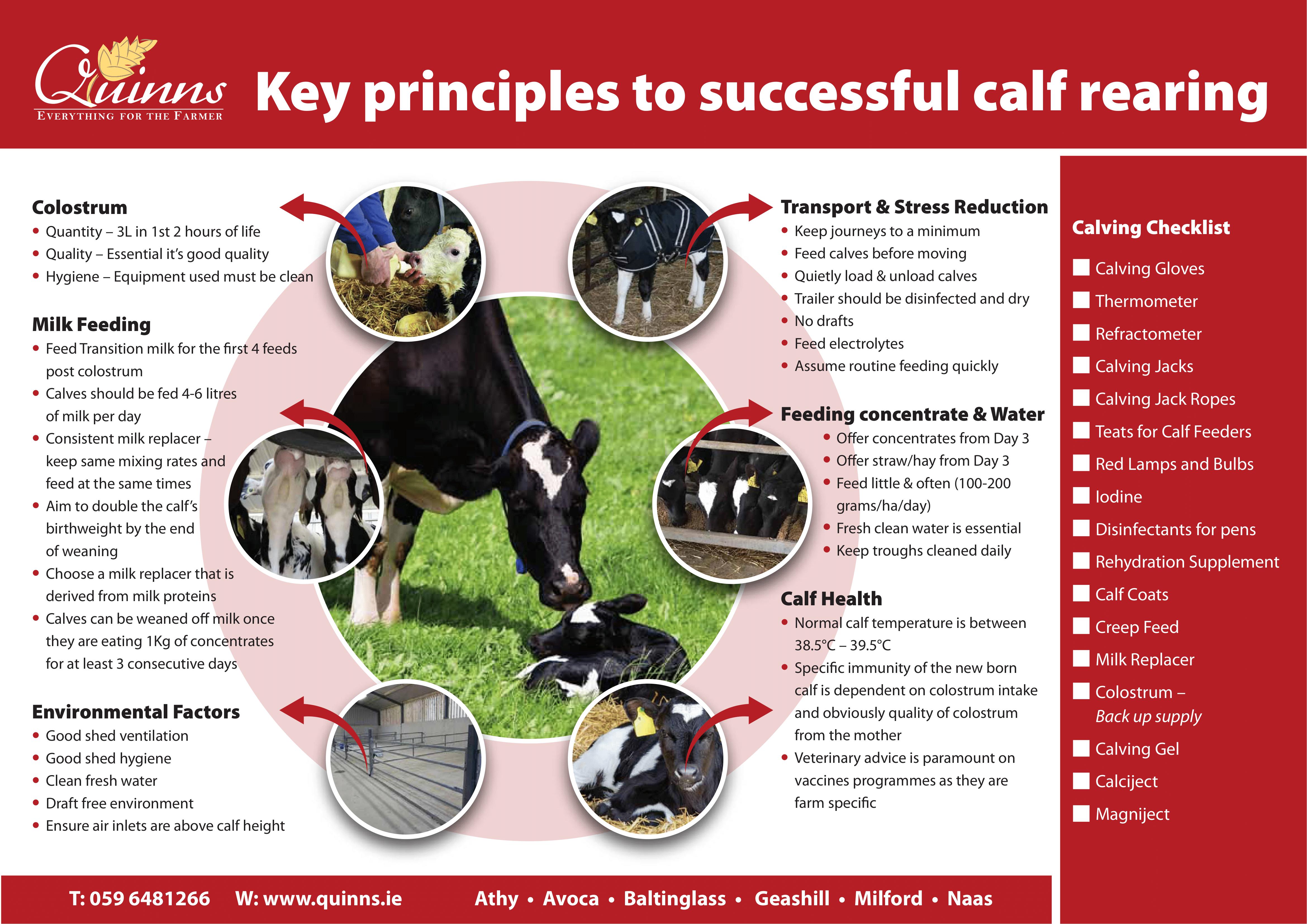Calving Checklist